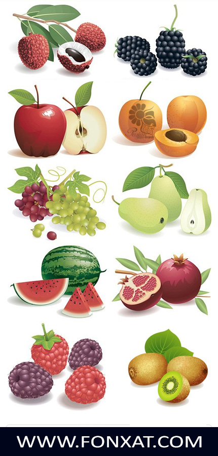 Download vector images fruit, watermelon, raspberry, apple, peach