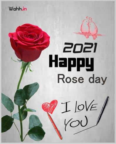 Happy 2021 Rose Day Status for Girlfriend In Hindi