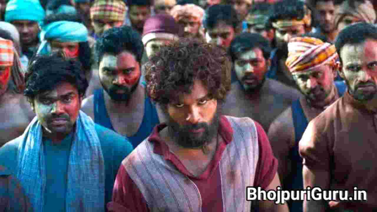 Pushpa Movie Budget And Box-office Collection