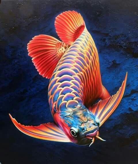 tranh cá rồng