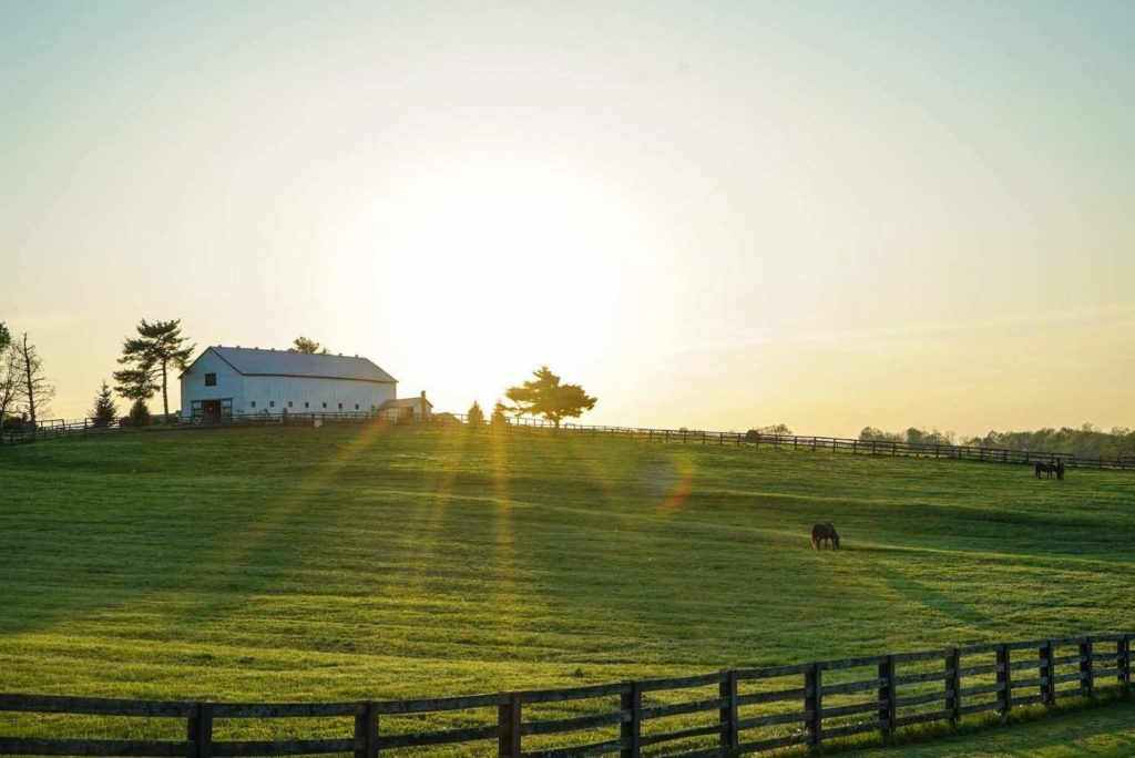What To Look For Before Buying A Barn