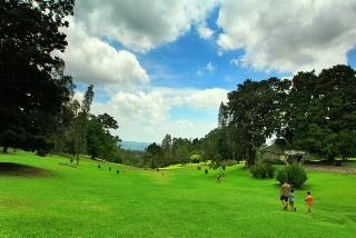 Selain Taman Bunga Nusantara Puncak anda juga bisa mengunjungi Kebun Raya Cibodas Puncak untuk menikmati pemandangan serba hijau, tapi masih bisa santai dan jaraknya tidak jauh Cobalah berjalan ke Kebun Raya Cibodas dan taman nasional Gunung Pangrango
