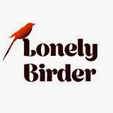 LONELY BIRDER