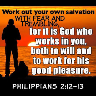 Catholic Daily Reading + Reflection: 4 November 2020 - Work Out Your Own Salvation