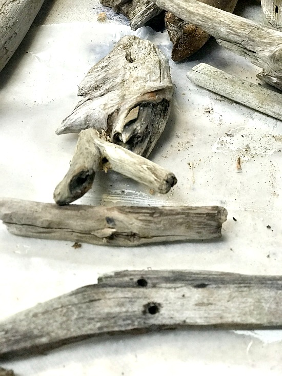 Driftwood fish head for wind chimes