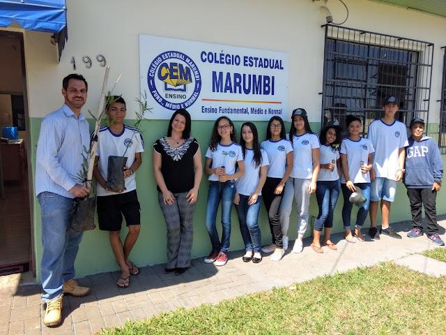 programa Paraná mais verde