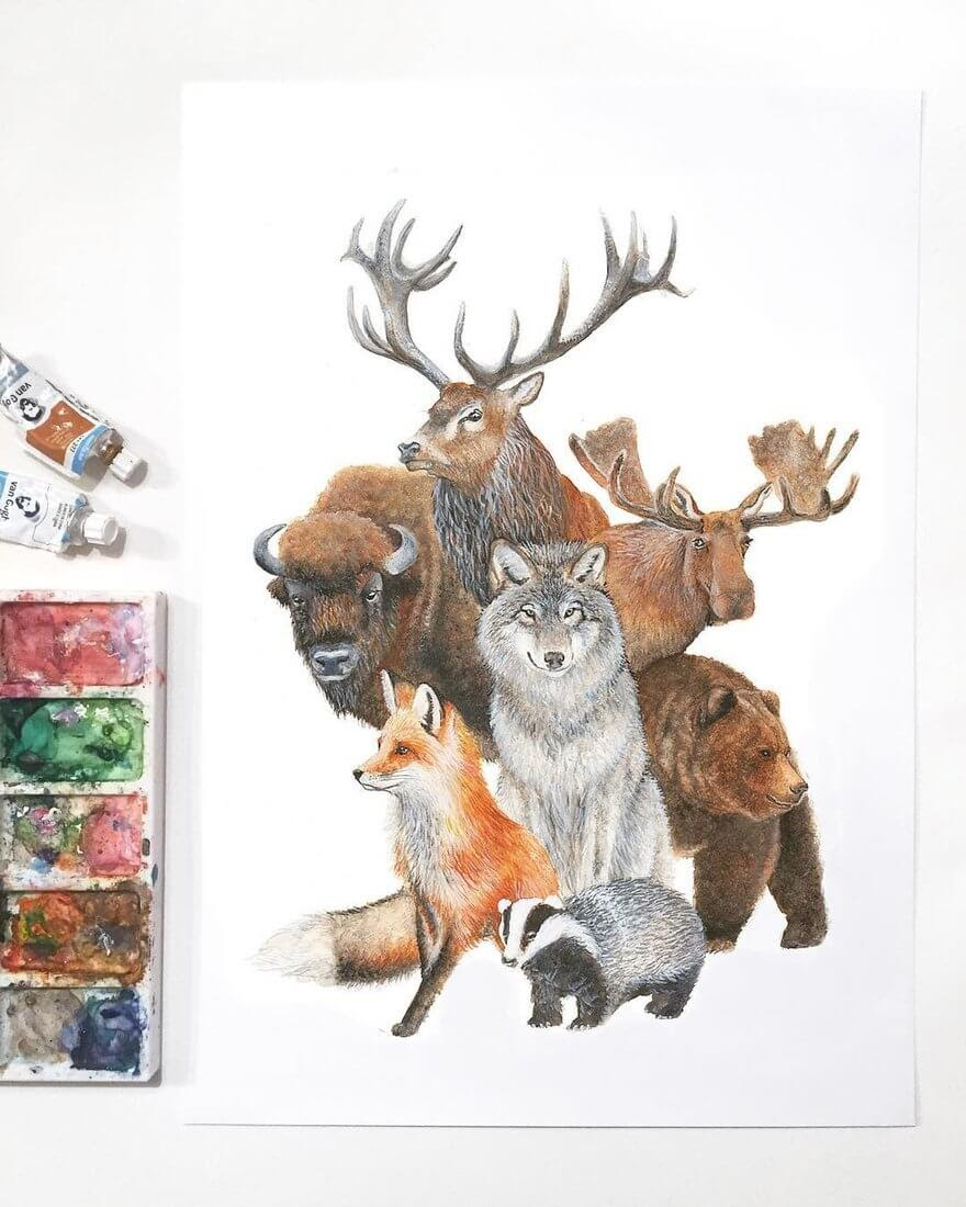 02-European-Animals-K-Schwarzoviously-Wildlife-Animal-Paintings-www-designstack-co