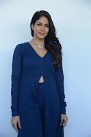 Lavanya Tripathi Latest Stills HeyAndhra.com