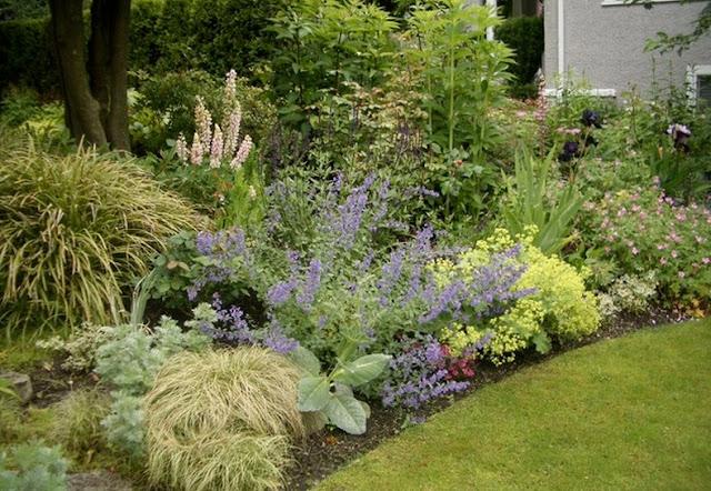 bordura florala design gradina amenajare curte flori perene firma proiect gradina si amenajare design gradina simpla cu flori peisagist