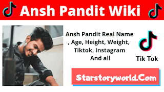 Ansh Pandit Wiki, Biography, Age, Birthday, GF & Salary