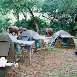 dormir dentro de un safari africa