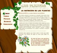 http://catedu.es/chuegos/kono/quinto/t2/nut.swf
