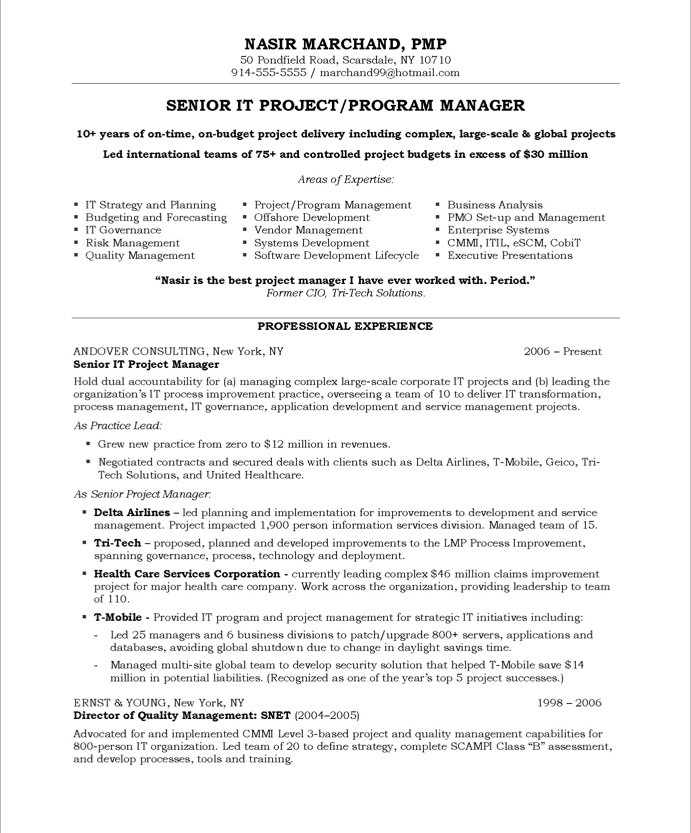 technical manager resume sample - software engineering manager resume