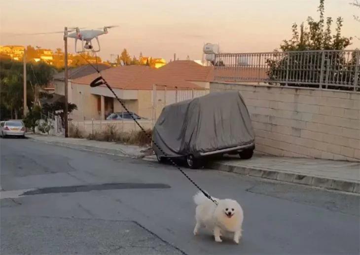 Está en cuarentena por Coronavirus y usa un dron para sacar a pasear a su perro