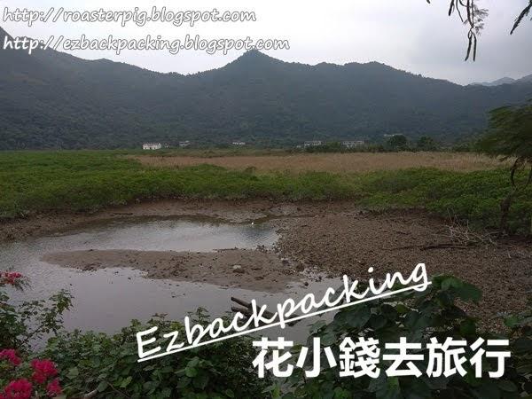 香港蘆葦田:鹿頸鳳坑谷埔行山