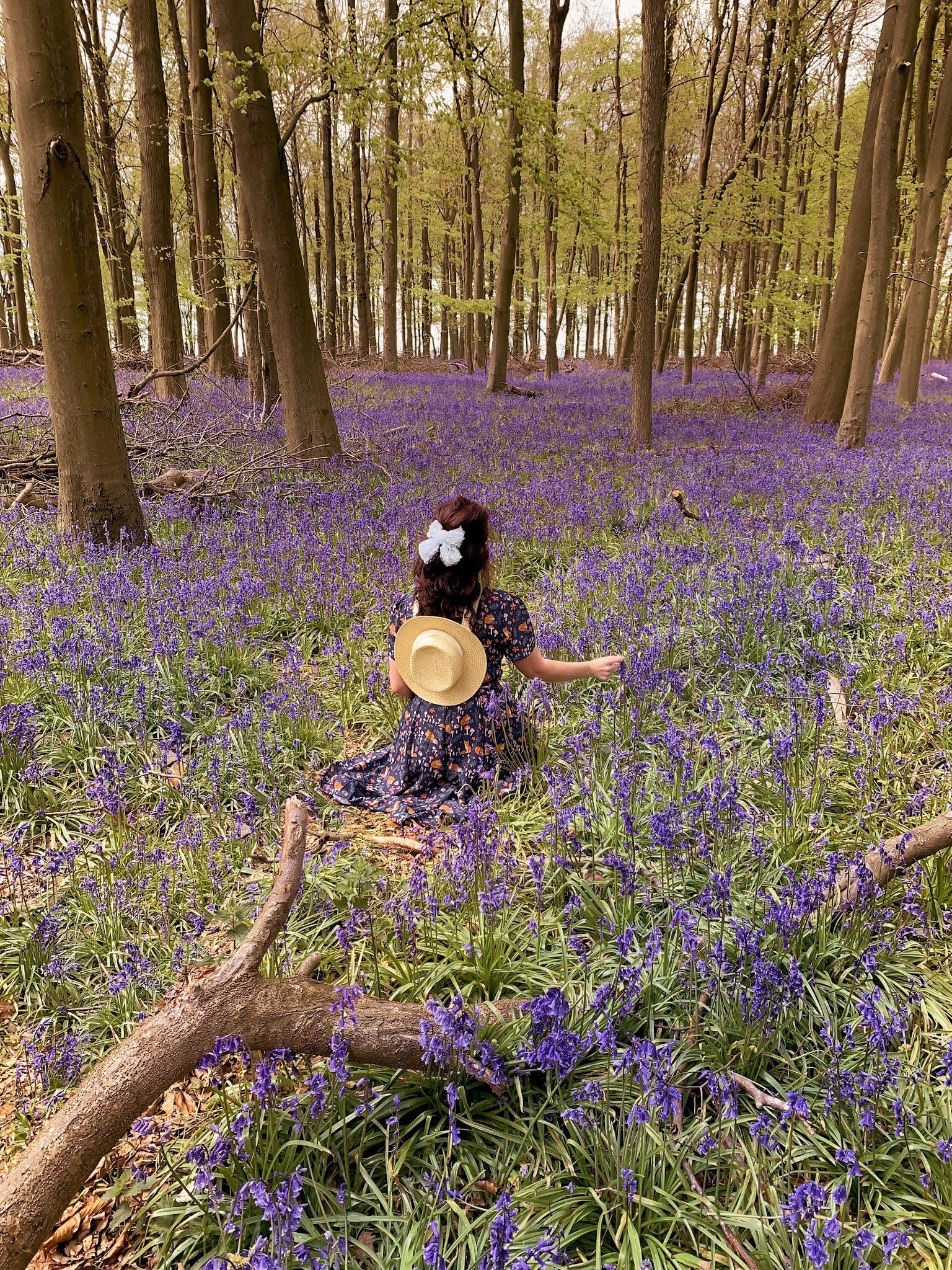 Best Instagram UK Flower Fields
