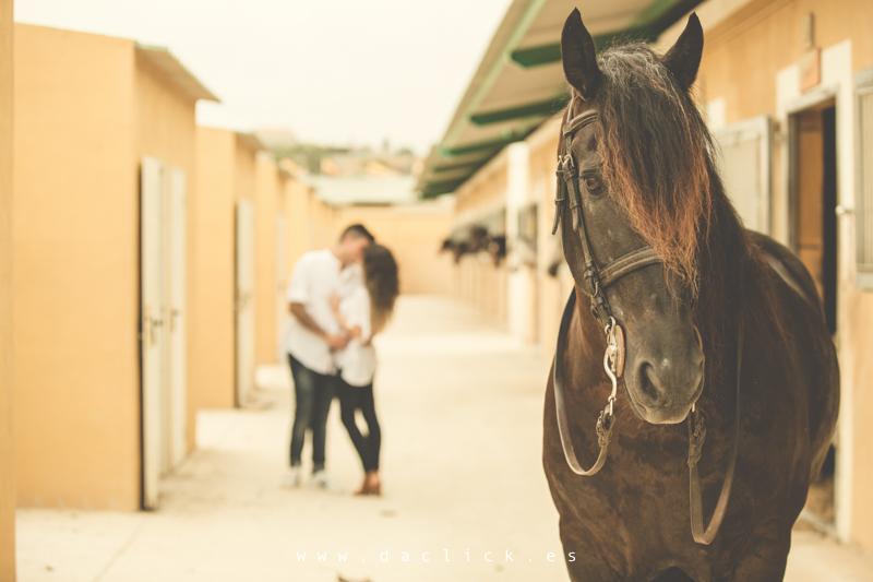 caballo pareja besándose