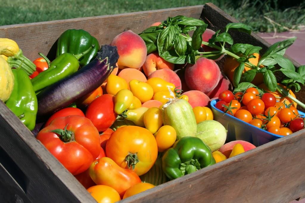 Harvesting Natural Foods