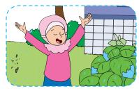 Alangkah sejuknya udara siang hari saat hujan www.jokowidodo-marufamin.com