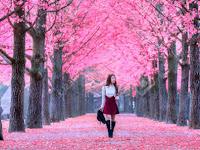 5 Tempat Paling Romantis Ala Drama Korea yang Disukai Banyak Wanita