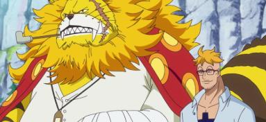One Piece: Episódio 890 – Marco! O Guardião  das Lembranças do Barba Branca.