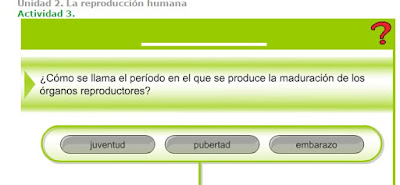 http://www.ceiploreto.es/sugerencias/A_1/Recursosdidacticos/SEXTO/datos/02_Cono/datos/05rdi/02/03.htm