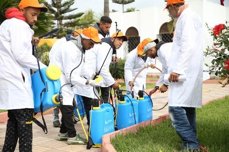 taroudantpress  تجار أسواق الجملة للخضر والفواكه يطلبون التعقيم خشية الوباء   تارودانت بريس