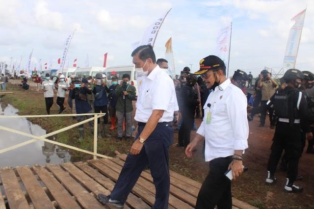Luhut Dorong Kolaborasi Food Estate Kalteng Libatkan Kementan, PUPR dan Peneliti