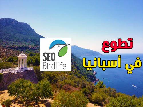 فرصة للتطوع مع جمعية SEO/Bird life في أسبانيا مع دورات تعلم اللغة الاسبانية (ممولة)