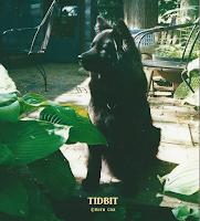 In memory of my dog Tidbit.