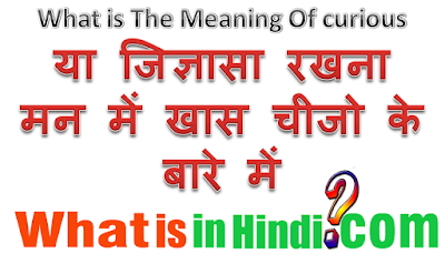 What is the meaning of Curious in Hindi
