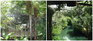 swiss robinson treehouse adventureland