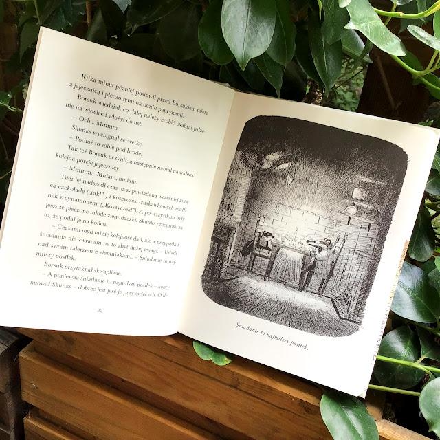 """""""Skunks i Borsuk"""" Amy Timberlake, Jon Klassen, Mamania, klasyczna opowieść dla dzieci i dorosłych, książka z mądrym przesłaniem"""