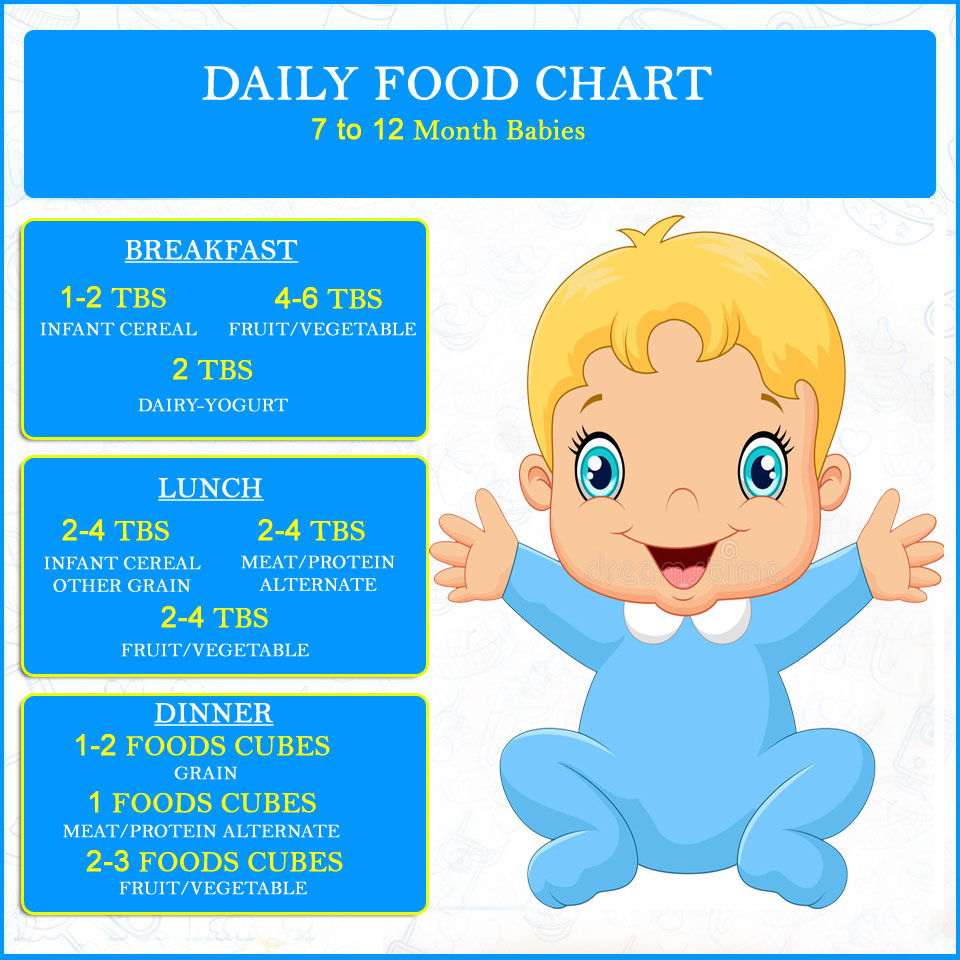 DAILY FOOD CHART FOR 7 TO 12 MONTH BABIES