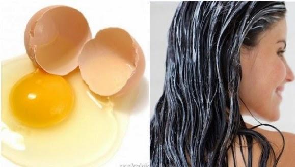 kocok kuning telur dengan satu cangkir susu dua sendok makan minyak zaitun dan perasan air lemon untuk menyegarkan masker rambut pelembab