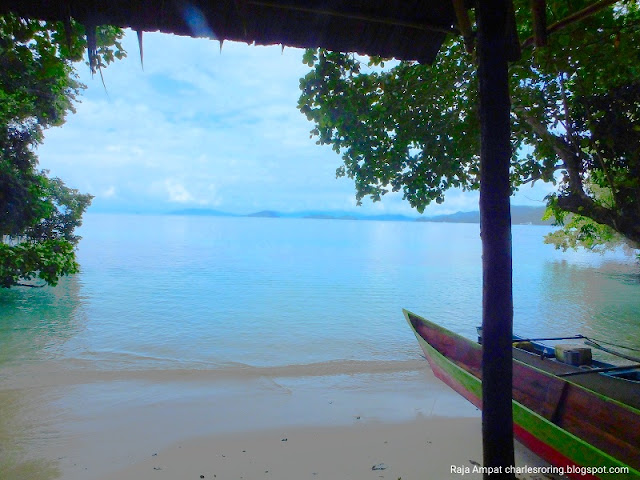 Swimming, snorkeling and freediving in Waigeo island