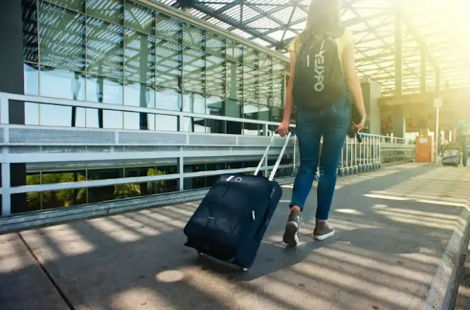 Business and Standard Travel Insurance Policies