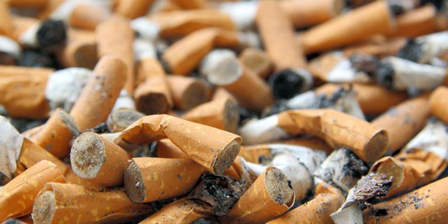 En Rosario crean ladrillos a partir de colillas de cigarrillos