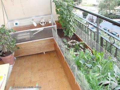Instalaciones para Testudo graeca en una terraza