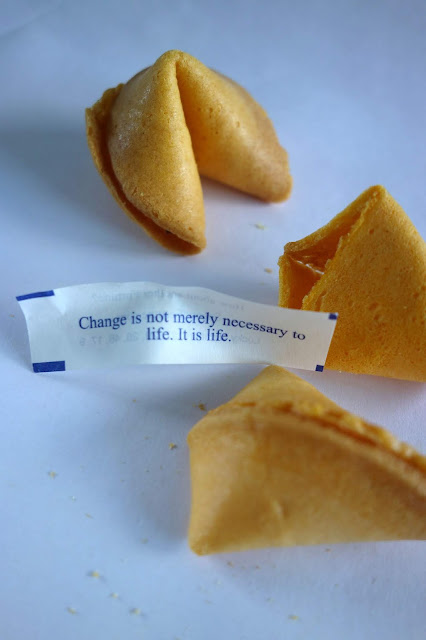 crafty uses for fortune cookie fortunes
