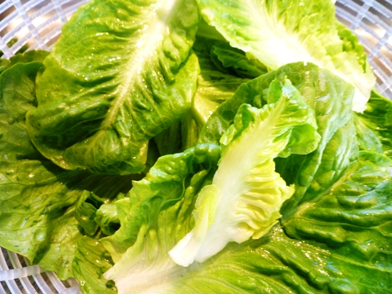 City Home Country Home Garden To Salad Butter Crunch