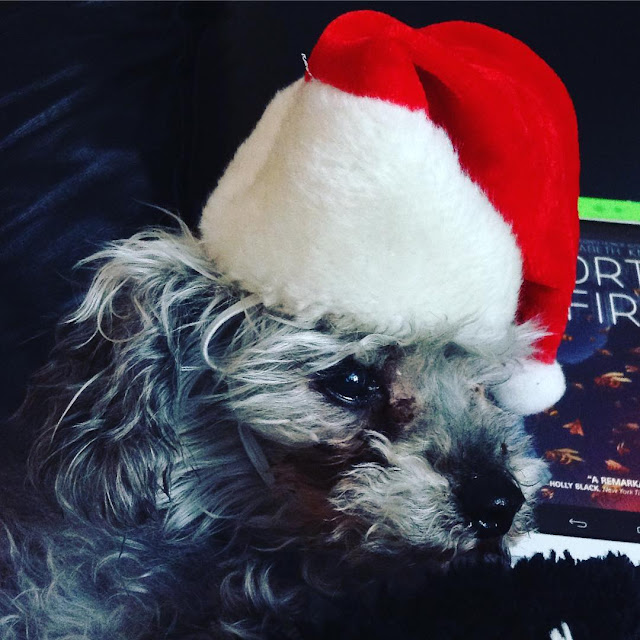 Murchie wears a red Santa Hat. The ereader with Mortal Fire on it is barely visible in the background.