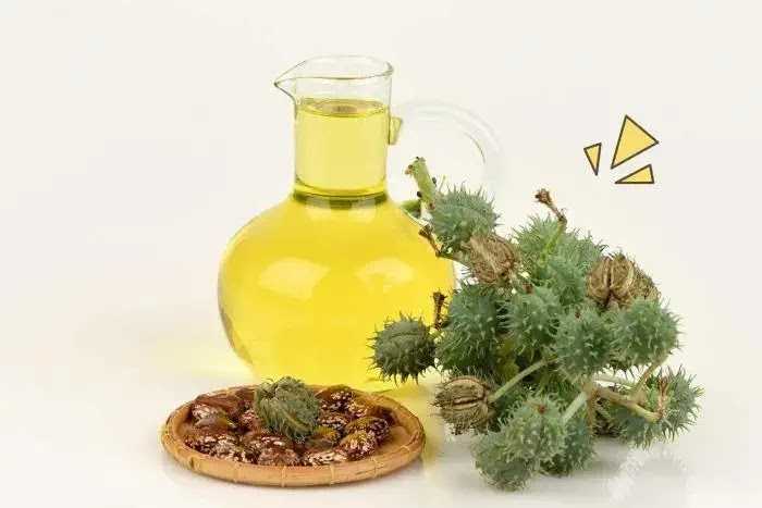 manfaat minyak jarak untuk kecantikan rambut dan kulit wajah