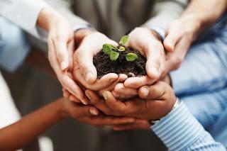 Afrontar el proceso de cambio en una organización