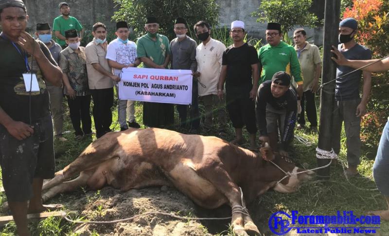 Kabaharkam Polri Serahkan Sapi Kurban Bobot  700 Kg ke PWNU Provinsi Sumut