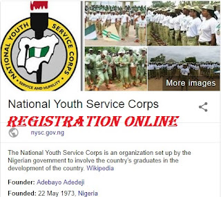 Online Registration For NYCS 2018 | Application Guidelines