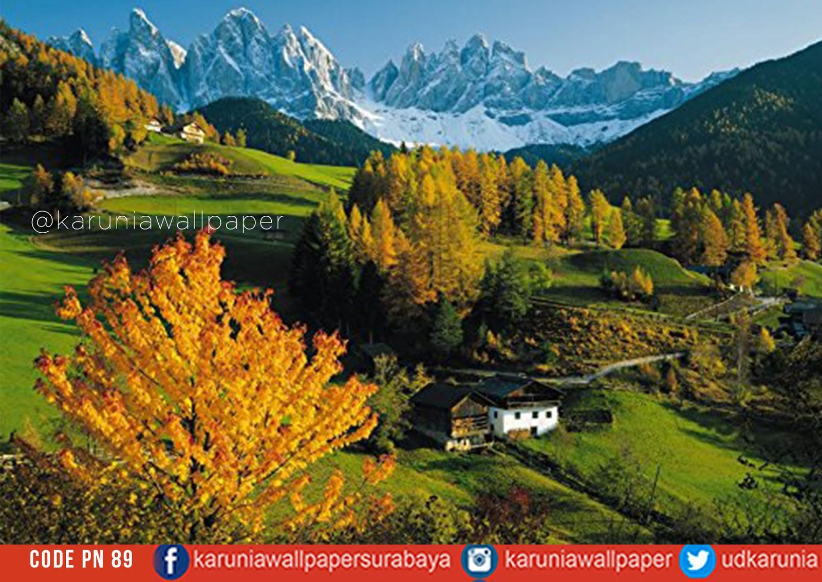 jual dinding wallpaper pegunungan alam