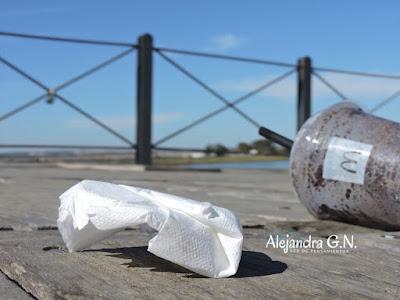 TecnoPensamiento | Guías en línea para reducir el uso de plástico