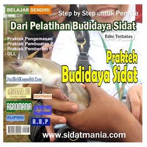 Praktek Budidaya Sidat (DVD) (Kode: PB)