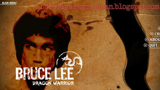 Bruce Lee Dragon Warrior APK